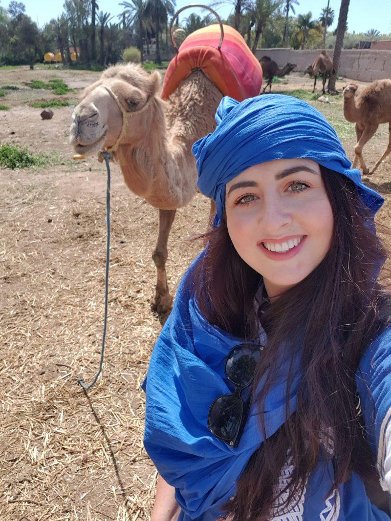 CAMELS, CAMELTREKKING, MARRAKECH, MOROCCO
