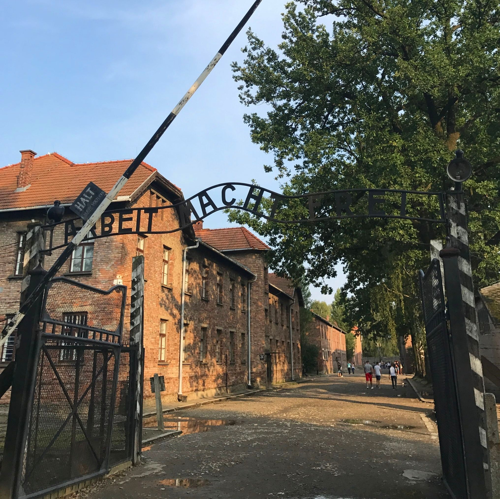 auschwitz, Poland, concentration camps, Poland