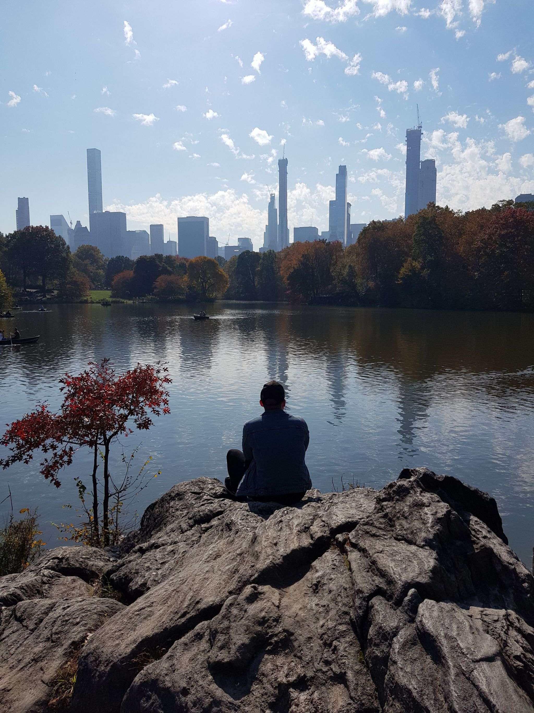 Central Park, views, Central Park skyline, turtle rock